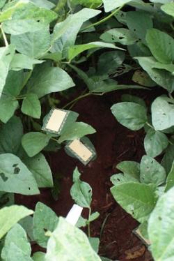 pulverizador-regulagem-e-calibrac3a7c3a3o